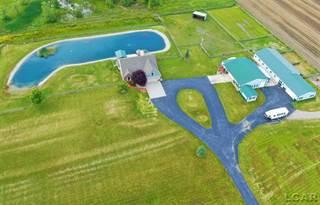 Single Family for sale in 9595 Memorial Hwy, Greater Lambertville, MI, 49276