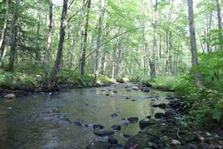 Land for sale in 0 US Rt 11, Pulaski, NY, 13142