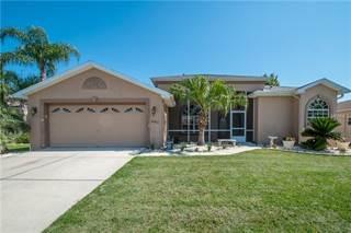 Single Family for sale in 4293 CALIQUEN DRIVE, South Brooksville, FL, 34601
