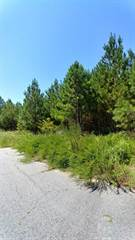 Land for sale in 0 Union Poine Drive, Union City, GA, 30291