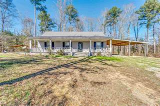 Single Family for sale in 4658 SMITH COUNTY RD 563, Morton, MS, 39152