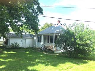 Single Family for sale in 307 S White, Sidney, IL, 61877