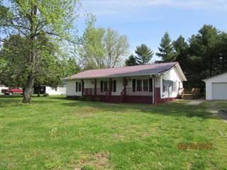 Single Family for sale in 873 Dam 53 Road, Grand Chain, IL, 62941