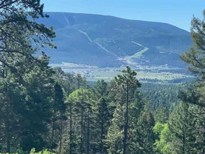 Lots And Land for sale in Lot 6 Palo Flechado Ridge Rd, Angel Fire, NM, 87710
