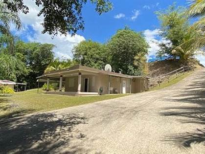 Residential Property for sale in 0 SAN SEBASTIAN BO GUAJATACA, Aibonito, PR, 00685