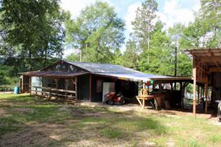 Single Family for sale in 283 Toledo Hills Dr., Hemphill, TX, 75948