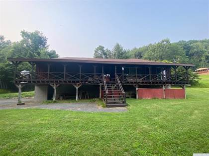 Residential Property for sale in 119 Panorama, Gilboa, NY, 12076