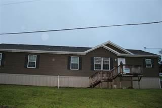 Residential Property for sale in 110 Jasper Street, Lashmeet, WV, 24733