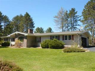 Single Family for sale in N16263 Birch, Spalding, MI, 49886