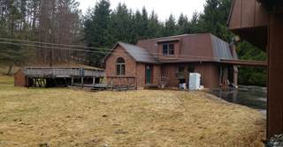House for sale in 2624 Stanley Lake Rd, Greater Little Meadows, PA, 18818