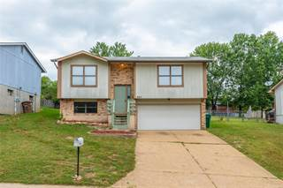 Single Family for sale in 2165 Wilderness, Barnhart, MO, 63012