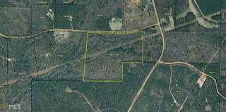 Farm And Agriculture for sale in 0 Irvin Rd, Shiloh, GA, 31826