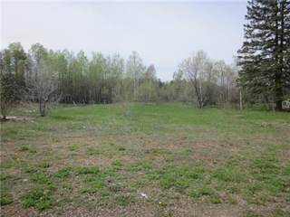 Land for sale in 2124 PETAWAWA BOULEVARD, Petawawa, Ontario