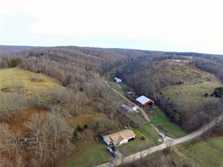 Single Family for sale in 1094 County Road 4430, Boss, MO, 65440