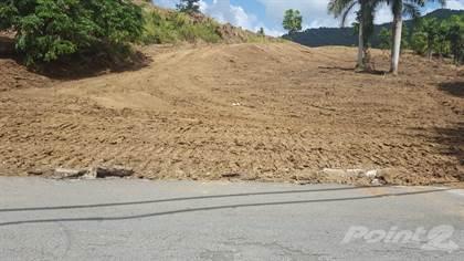 Lots And Land for sale in PR 185 KM 11.2, Quebrada Prieta Ward, Canovanas, PR, 00729