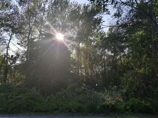 Land for sale in 66 Doane Road, Harwich Port, MA, 02646