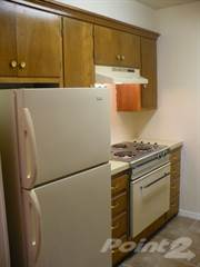 Apartment for rent in Savannah Apartments - 1 Bed 1 Bath, Brownfield, TX, 79316