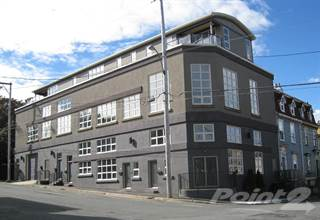 Condo for rent in 62 William Street, St. John's, Newfoundland and Labrador, A1C 2S1