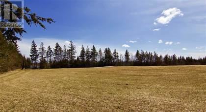 Vacant Land for sale in ACREAGE CLARENCE Lane, Cavendish, Prince Edward Island, C0A1N0