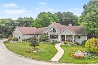 Single Family for sale in 8502 Doyle Road, Laingsburg, MI, 48848
