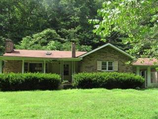 Single Family for sale in 61 Peachy Willliams Road, Frenchburg, KY, 40322
