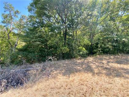 Lots And Land for sale in Tbd FM 2159, Bremond, TX, 76629