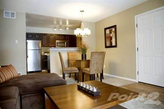 Apartment For Rent In Stone Creek Apartments   1 Bedroom, Fort Collins, CO,