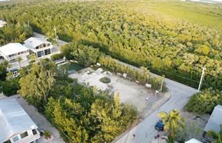 Land for sale in 862 Cardinal Lane, Key Largo, FL, 33037