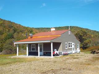 Residential Property for sale in 976 Brizzee Hollow Road, Greater Oswayo, PA, 16915