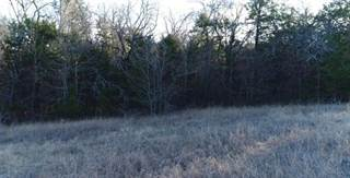 Land for sale in 830 Houston Street, Anna, TX, 75409