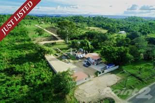 Farm And Agriculture for sale in 9 Acre Investment Property on Mile 54 Western Highway, Camalote Village, Cayo