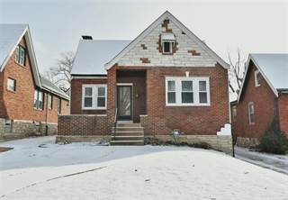 Single Family for sale in 8610 Drury, Saint Louis, MO, 63147