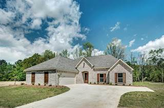 Single Family for sale in 338 BULLOCK CIR, Richland, MS, 39218