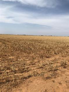 Lots And Land for sale in 2410 E County Road 5300, Lubbock, TX, 79403