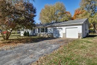 Single Family for sale in 220 Tillman Avenue, Rogersville, MO, 65742