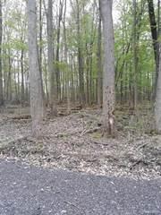 Land for sale in Parcel F Hidden Creek Court, Dexter, MI, 48130
