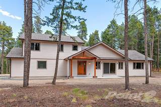 Single Family for sale in 10892 Barker Ave , Conifer, CO, 80433
