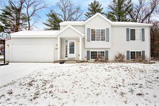Single Family for sale in 1204 Abby Court, Greater Wolf Lake, MI, 49442