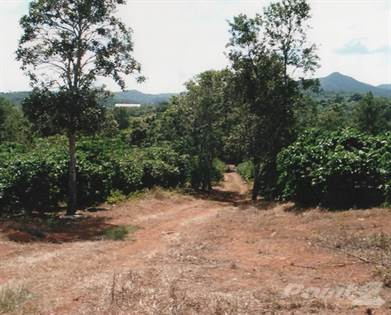 Lots And Land for sale in Coffee Plantation in Utuado with Houses, Utuado, PR, 00641