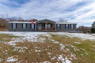 Single Family for sale in 4029 E Shore Dr, Hillsboro, MO, 63050