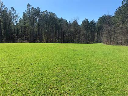 Lots And Land for sale in 9952 Hospital Road, Meadville, MS, 39653