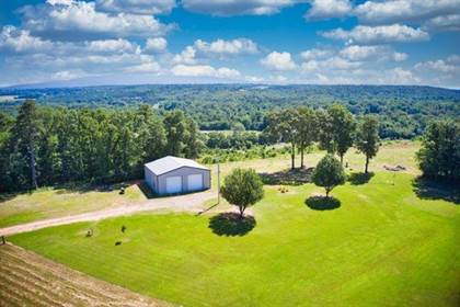 Lots And Land for sale in 4420 Cloud Mountain Road, Hector, AR, 72843