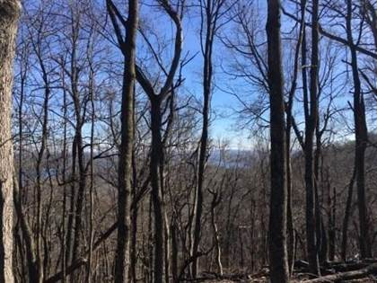 Lots And Land for sale in Lots 12, 13, 14, 25 Lodge  DR, Garfield, AR, 72732