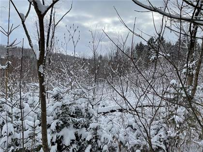 Lots And Land for sale in 00 South Cooper Hill Road, Humphrey, NY, 14706