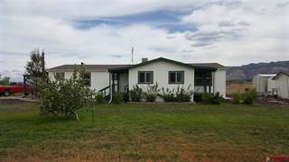 Single Family for sale in 5280 Road 21, Cortez, CO, 81321