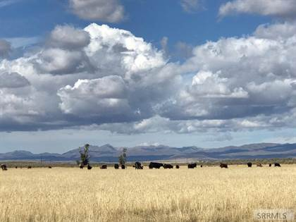 Farm And Agriculture for sale in No address available, Spencer, ID, 83423