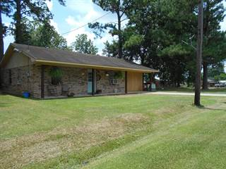 Single Family for sale in 256 1st STREET, Bude, MS, 39630