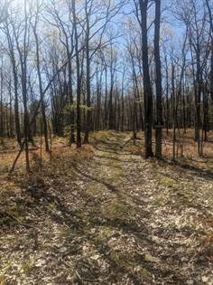 Lots And Land for sale in Ridge Road, Greater Bentley Creek, PA, 16925