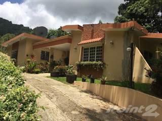 Residential Property for sale in Bo. Coabey, Jayuya, Jayuya, PR, 00664