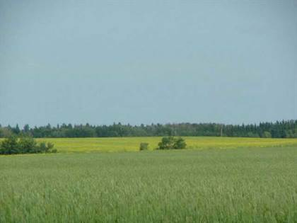 Agriculture for sale in 0 A51069 HWY 814 HI, Rural Leduc County, Alberta
